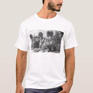 Aardvark - Orycteropus afer T-Shirt