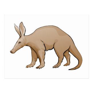 Aardvark Postcard