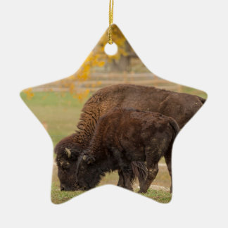 AAutumn Buffaloes Cow and Calf Ceramic Ornament