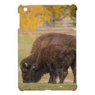 AAutumn Buffaloes Cow and Calf iPad Mini Cases