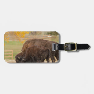 AAutumn Buffaloes Cow and Calf Luggage Tag