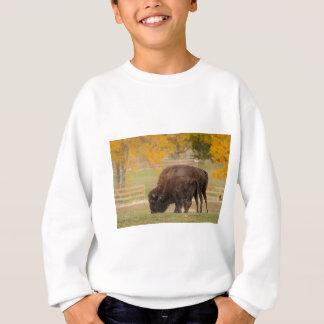 AAutumn Buffaloes Cow and Calf Sweatshirt