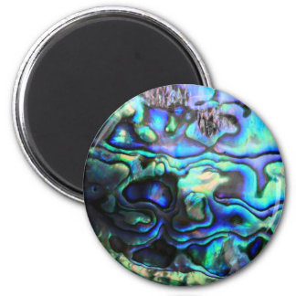 Abalone paua shell 6 cm round magnet