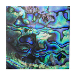 Abalone paua shell small square tile