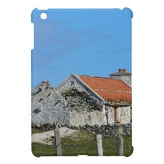 Abandoned Irish House iPad Mini Cases