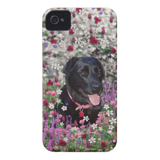 Abby in Flowers – Black Lab Dog iPhone 4 Covers