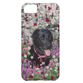 Abby in Flowers – Black Lab Dog iPhone 5C Case