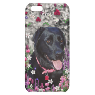 Abby in Flowers – Black Lab Dog Cover For iPhone 5C