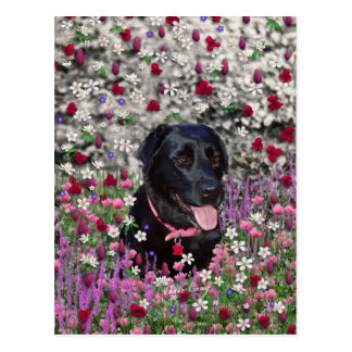 Abby in Flowers – Black Lab Dog Postcard