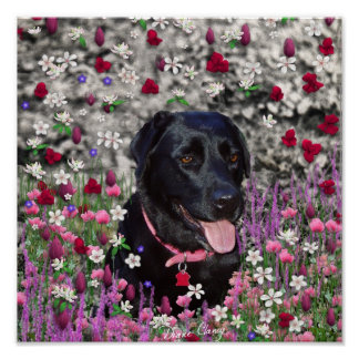 Abby in Flowers – Black Lab Dog Posters