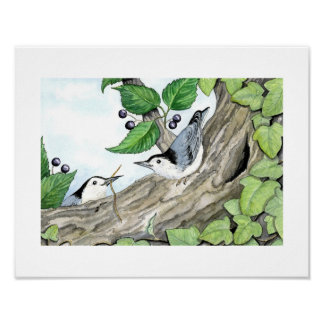 ABC's print - Nate and Nat Nuthatch