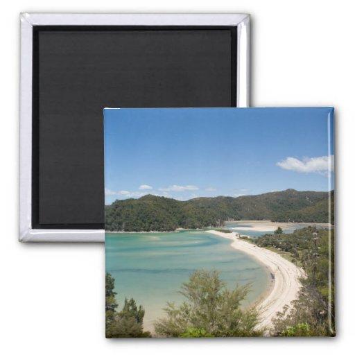Abel Tasman N.P. Shore DSC8721 Fridge Magnets