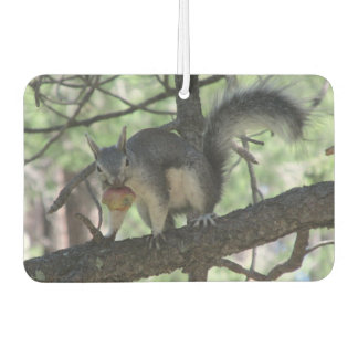 Abert's Squirrel Car Air Freshener