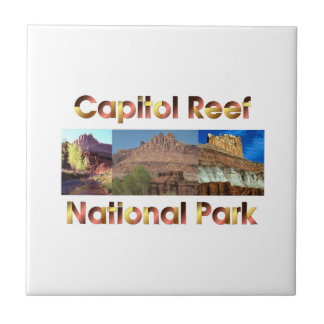 ABH Capitol Reef Small Square Tile