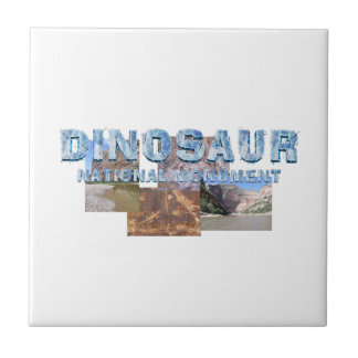 ABH Dinosaur NM Small Square Tile
