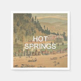 ABH Hot Springs Disposable Napkin