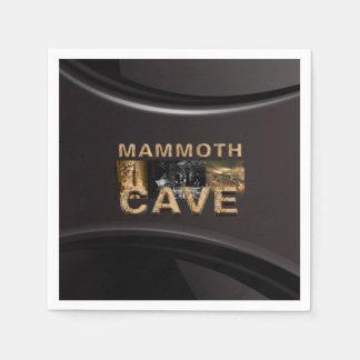 ABH Mammoth Cave Disposable Serviette