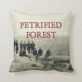 ABH Petrified Forest Cushion