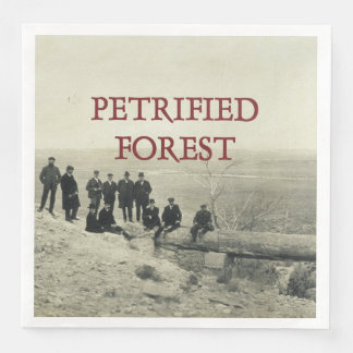 ABH Petrified Forest Disposable Napkins