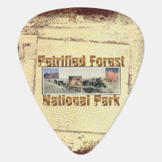 ABH Petrified Forest Guitar Pick