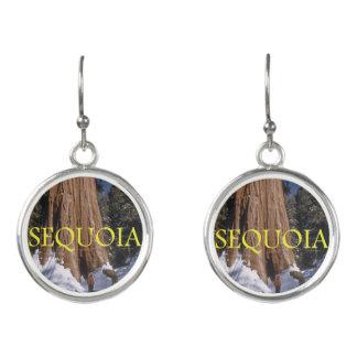 ABH Sequoia Earrings