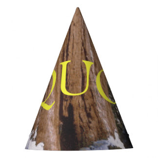 ABH Sequoia Party Hat