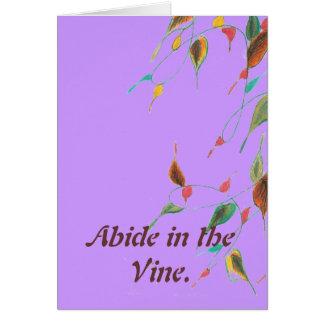 Abide Card