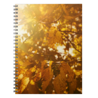 Abide with Me Spiral Note Books
