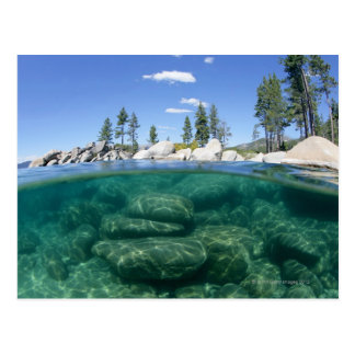 Above and below Lake Tahoe Postcard