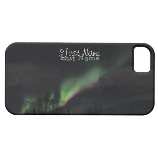 ABPAG Aurora Borealis Purple and Green iPhone 5 Covers