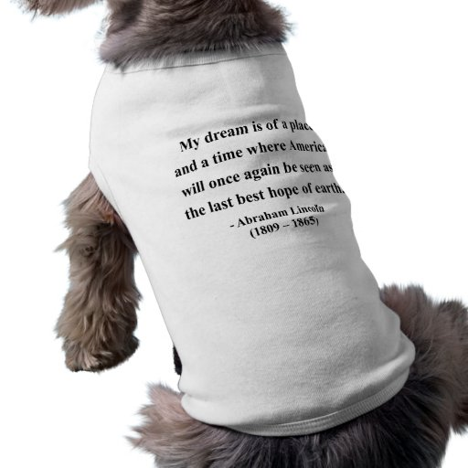 Abraham Lincoln Quote 10a Pet Tee Shirt