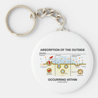 Absorption Of The Outside Occurring Within Keychains