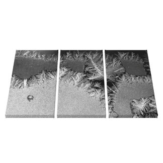Abstact Art : B/W Photo : Ice Crystals / Frost Canvas Print