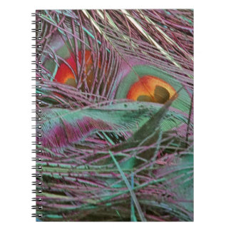 Abstract 70s Peafowl Notebooks