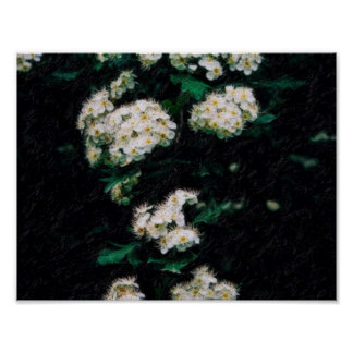 abstract almond flowers.jpg poster