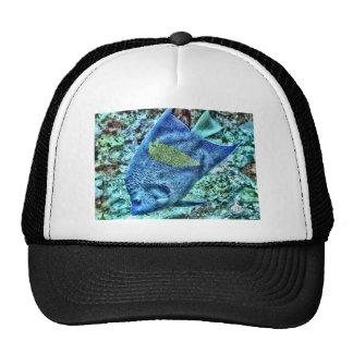 Abstract Angel Fish Cap