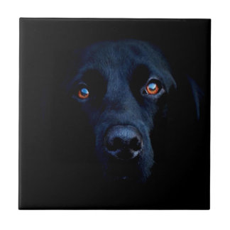 Abstract Animal Dark Dog Ceramic Tile