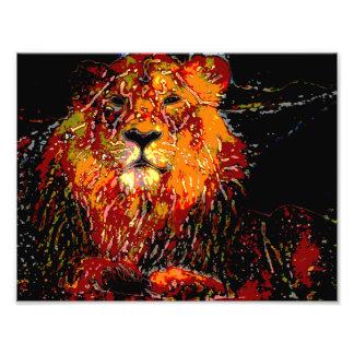 abstract Animal - Lion Photographic Print
