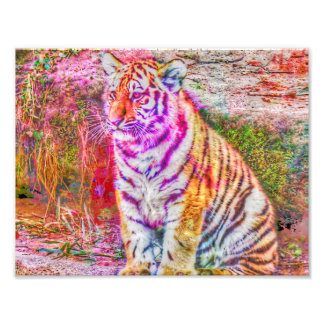 Abstract Animal-painted young tiger Photographic Print