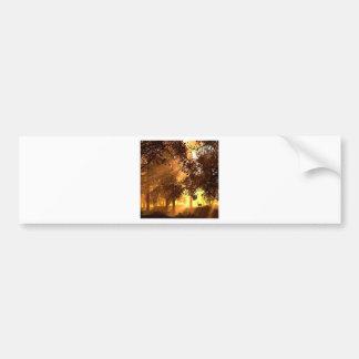 Abstract Animal Sun Wood Bumper Sticker
