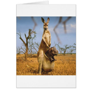 Abstract Animals Kangaroo Baby Shock Greeting Card