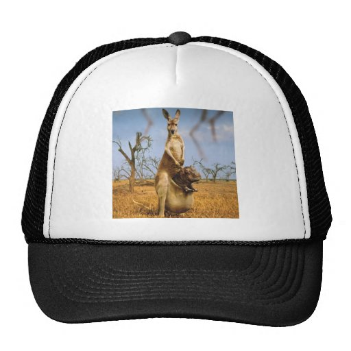 Abstract Animals Kangaroo Baby Shock Hat