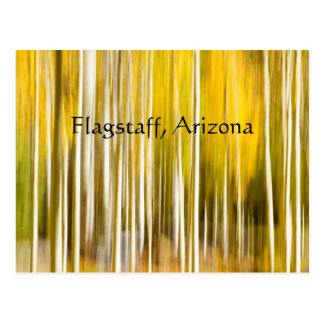 Abstract Aspen's Flagstaff Arizona Postcard