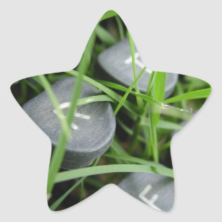 Abstract Back To Nature Star Sticker