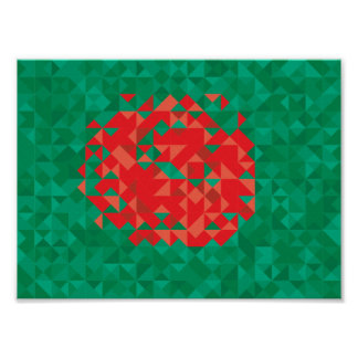 Abstract Bangladesh Flag, Bangladech Colors Poster