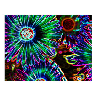 Abstract Cape Daisy postcard