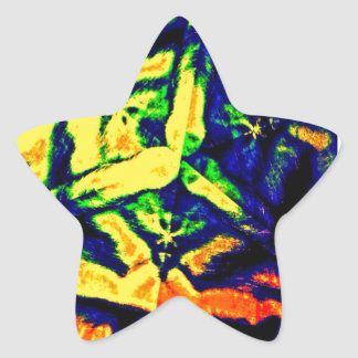 Abstract Color Mix Star Sticker