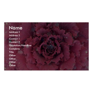 Abstract Detail of ornamental cabbage Business Card