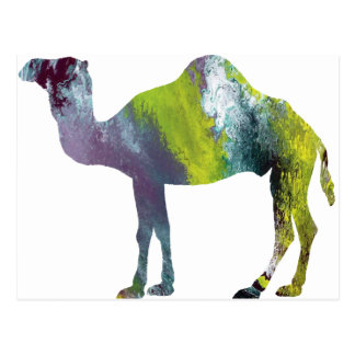 Abstract Dromedary silhouette Postcard