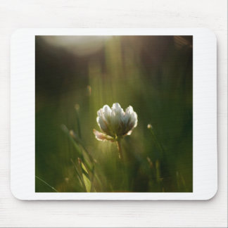 Abstract Flower Rush Of Light Mouse Pad